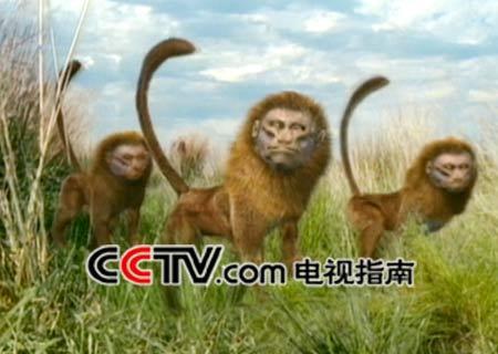 com-动物嘉年华:未来世界的动物