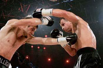 2007年世界职业拳王争霸赛